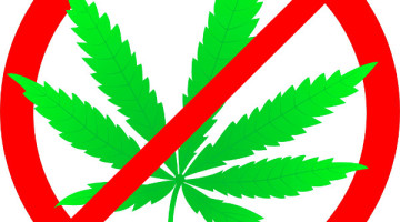 anti-marijuana